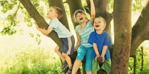Kids on tree