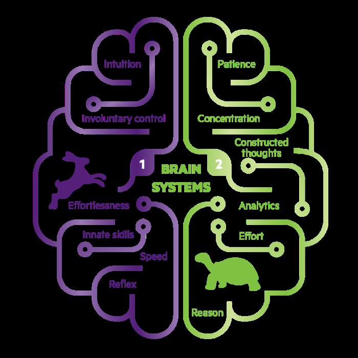 brain-systems-01-1024x1024