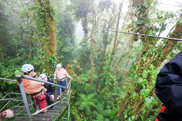 Zip Line View into the Costa Rican Rainforest