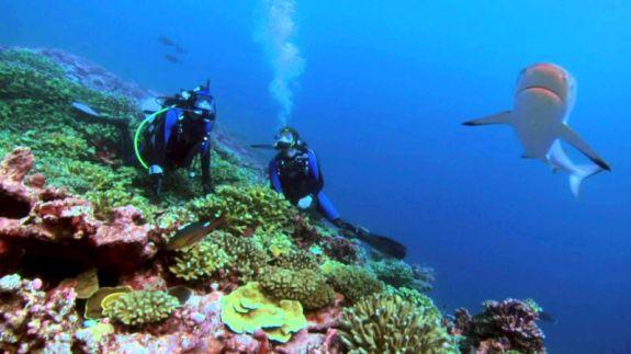 marin-exploration