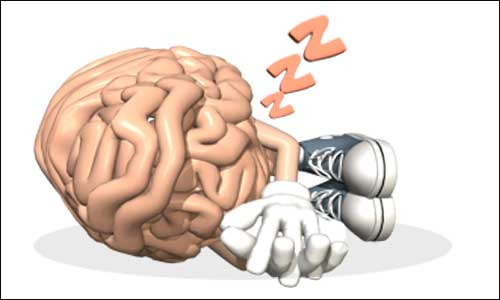 sleeping-brain