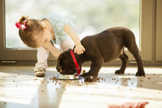 Little-girl-feeding-her-dog