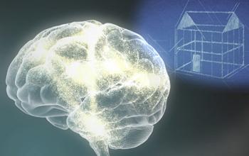 brain_architecture-card