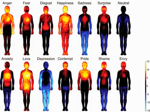 research-mapping-human-emotions-shows-strong-mind-body-connection