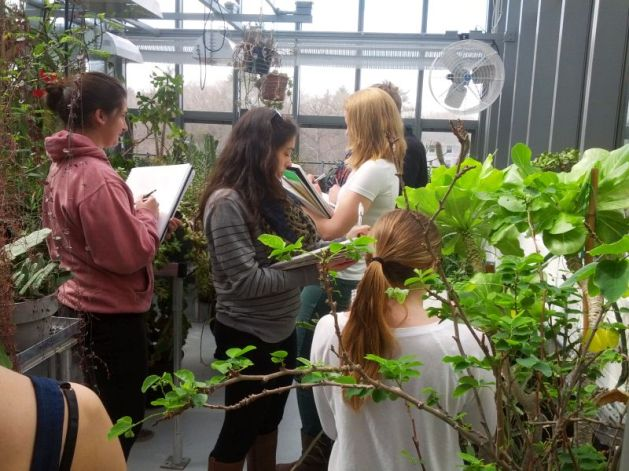 art-students-sketching-in-greenhouse