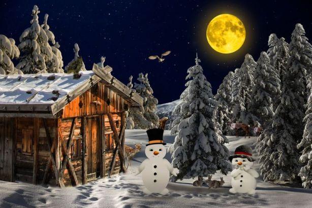 winter-1944954_960_720