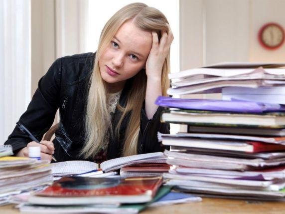 homework-teri