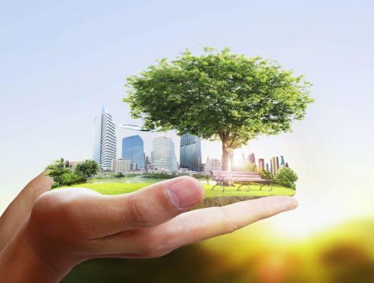 Sustainability main page photo