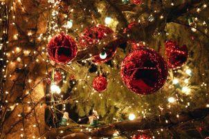 1-merry-christmas-1