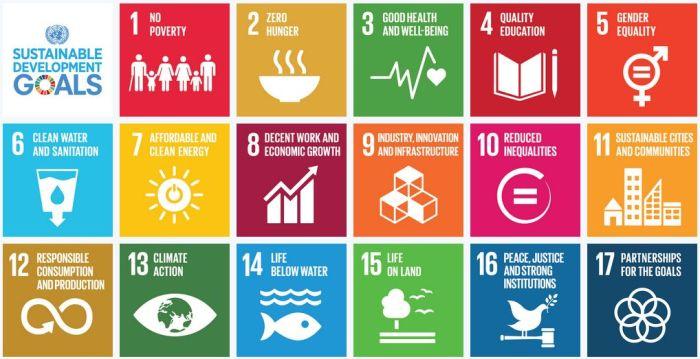 17-UN-Goals