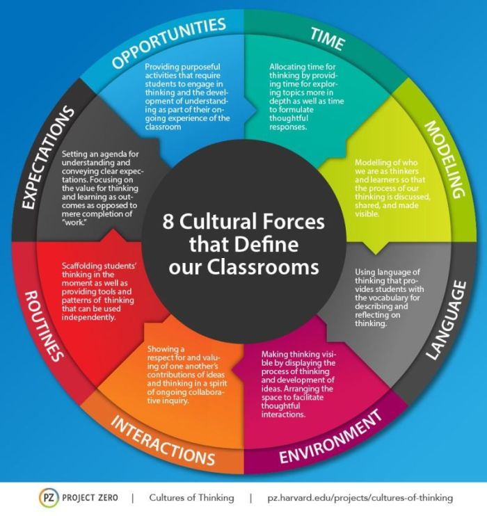 cultures-of-thinking-5