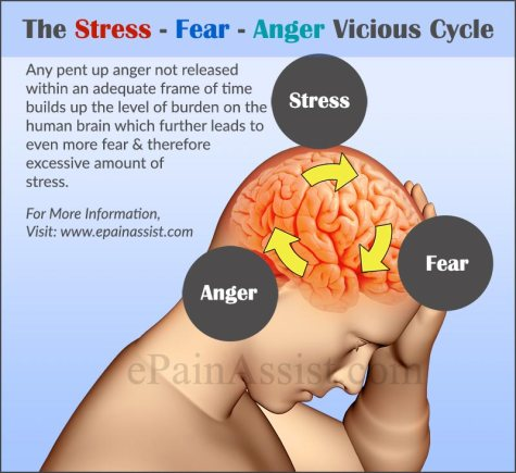 1-stress-fear-anger-vicious-cycle-1