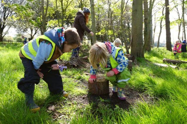 Forest-kindergarden-1