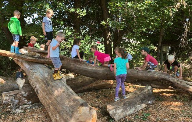 Forest-kindergarden-3