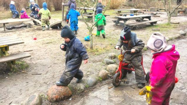 Forest-kindergarden-4