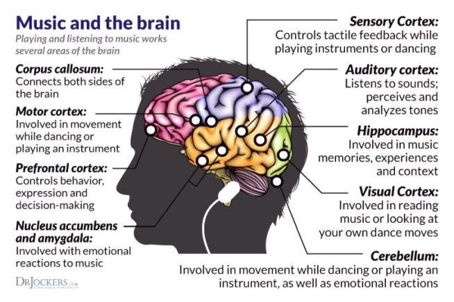 1-music-brain-1